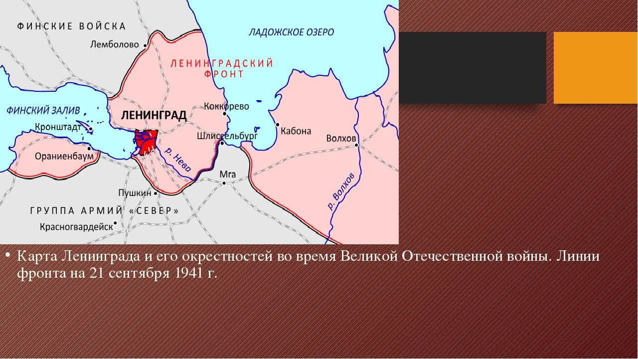 карта блокада ленинграда фото шиповников цветы