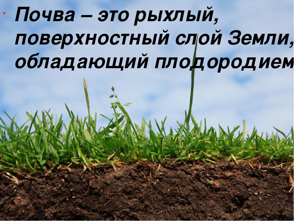 Почва – это рыхлый, поверхностный слой Земли, обладающий плодородием.