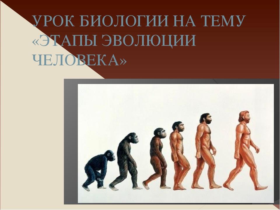 Этапы эволюции человека биология