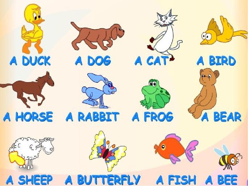 Детский английский слова в картинках