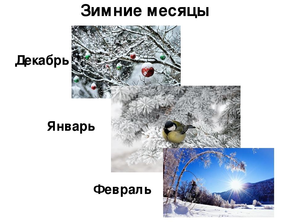 женщин картинки на зиму декабрь январь февраль сети можно