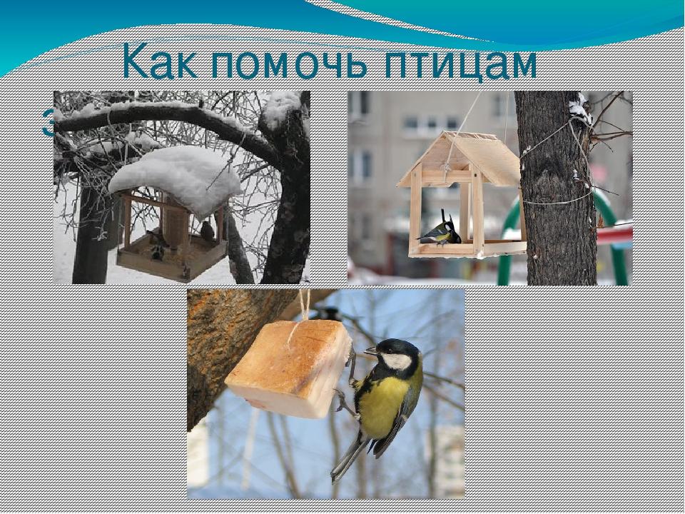 Картинки зима природа новый год чтобы