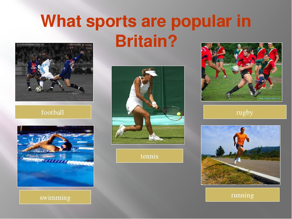 what is sport Sport and recreation entail activities that help to develop life skills, abilities, talents and improve the general health of the body such activities may be used as sources of income, to have fun and to stay physically fit sport and recreation activities include soccer, basketball, swimming.