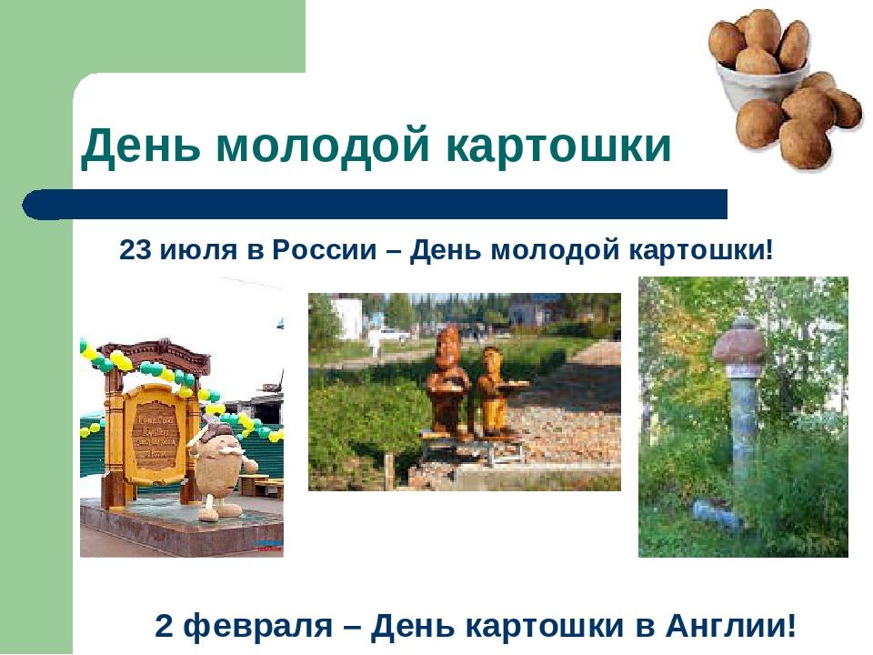 День молодой картошки 23 июля в России – День молодой картошки! 2 февраля – Д...