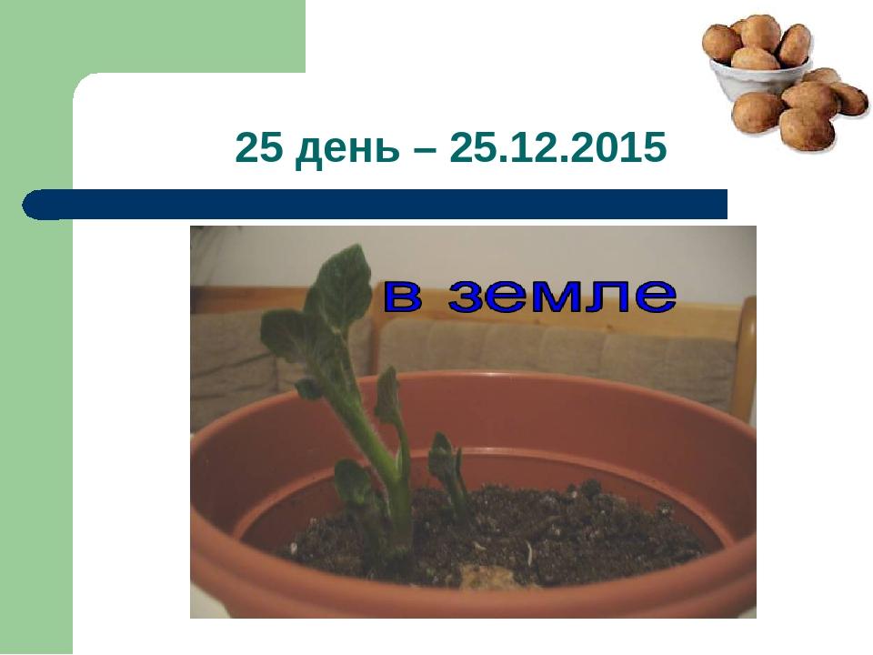 25 день – 25.12.2015