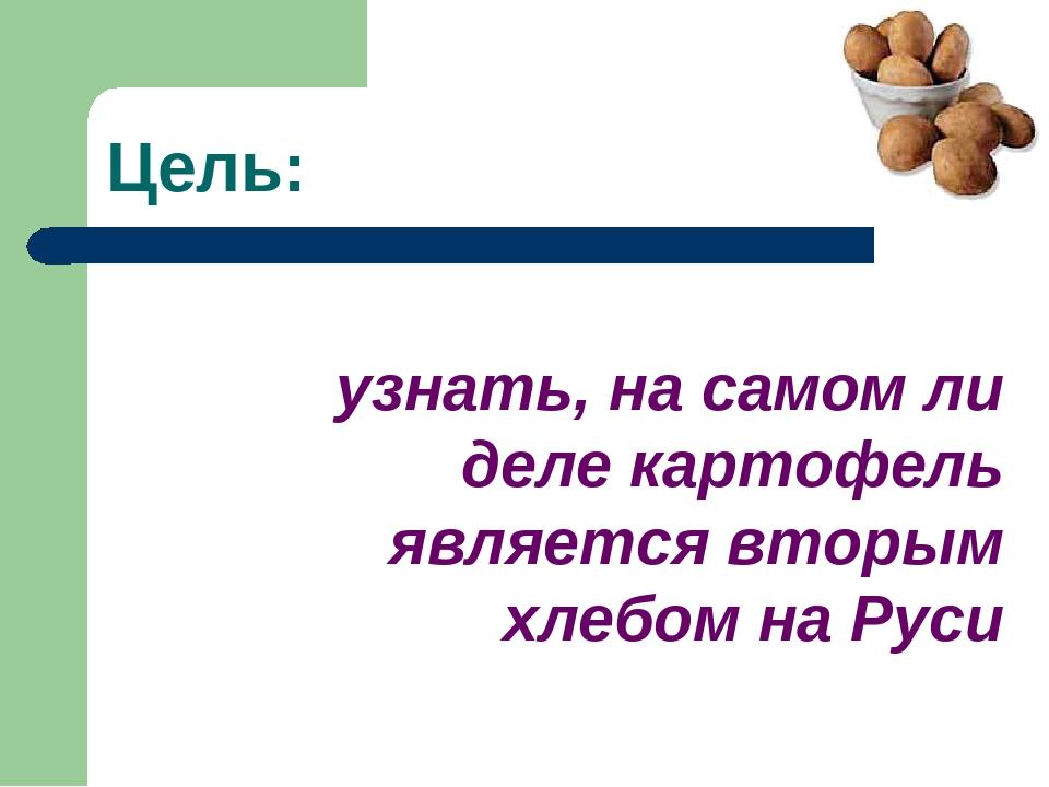 Цель: узнать, на самом ли деле картофель является вторым хлебом на Руси