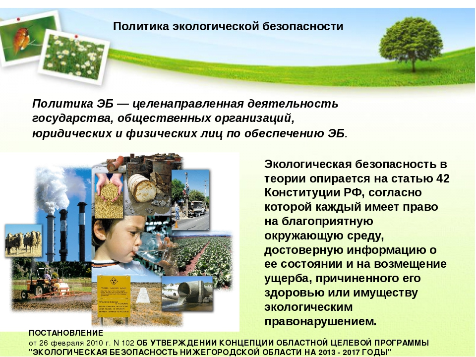 Политика экологической безопасности Политика ЭБ — целенаправленная деятельнос...