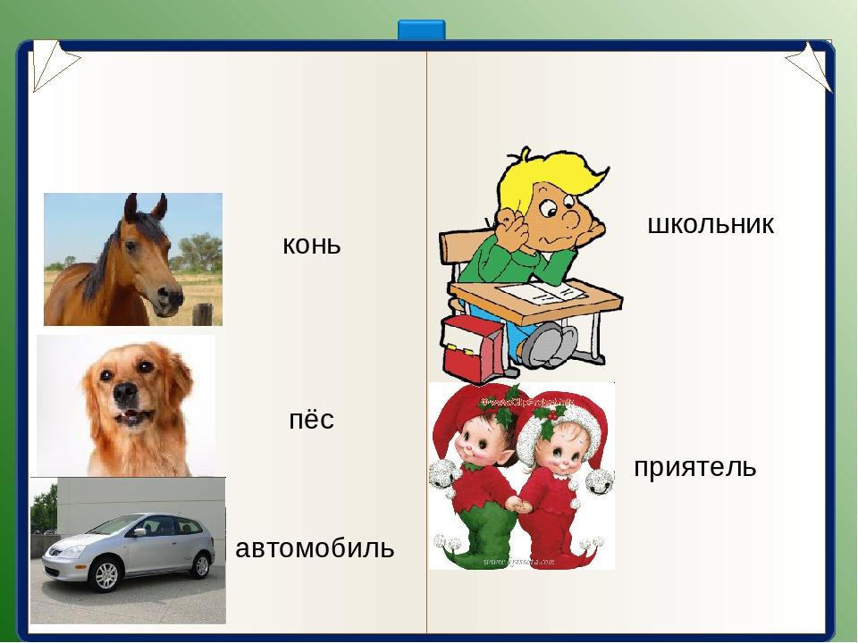 конь пёс автомобиль школьник приятель лошадь собака машина ученик друг