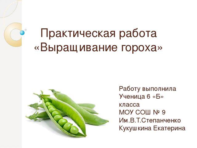 Дипломная работа на тему выращивание гороха 7262