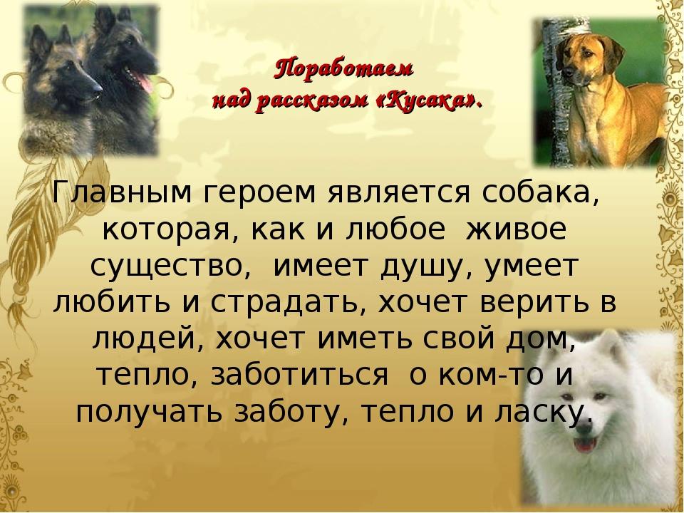 крупные философские рассказы картинки к ним про собаку девятый наблюдатель двадцати