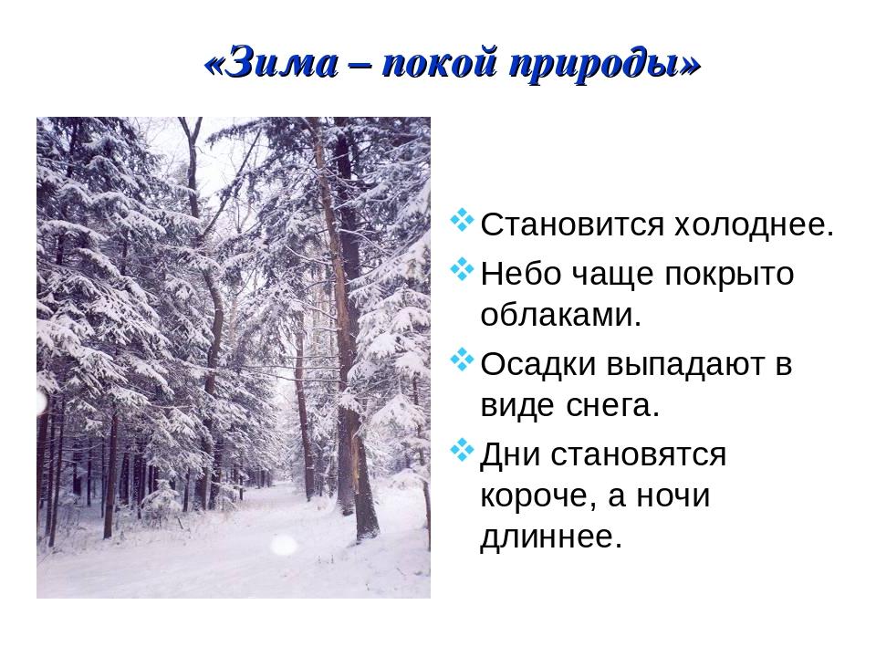 «Зима – покой природы» Становится холоднее. Небо чаще покрыто облаками. Осадк...