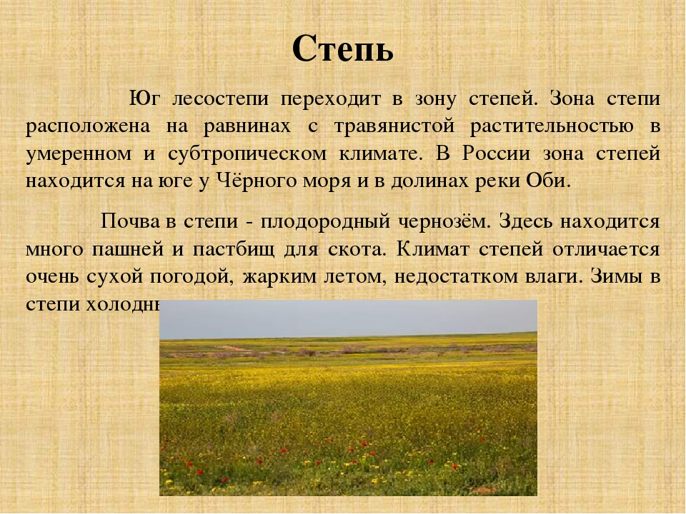 панно природные зоны россии степи сейчас так красива