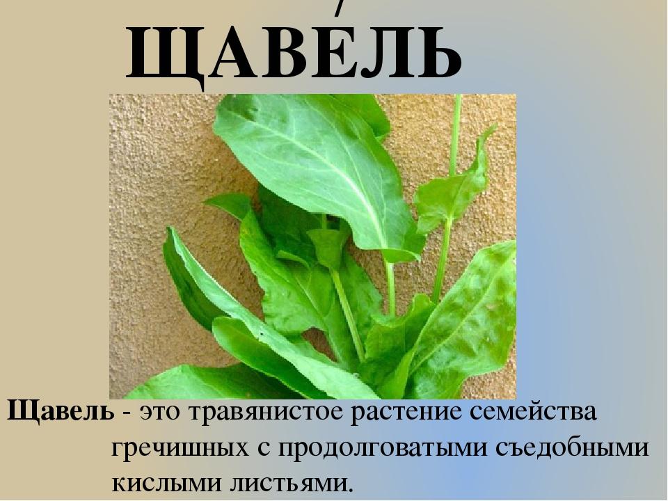 Перевести на украинский язык словосочетание вкусный картофель