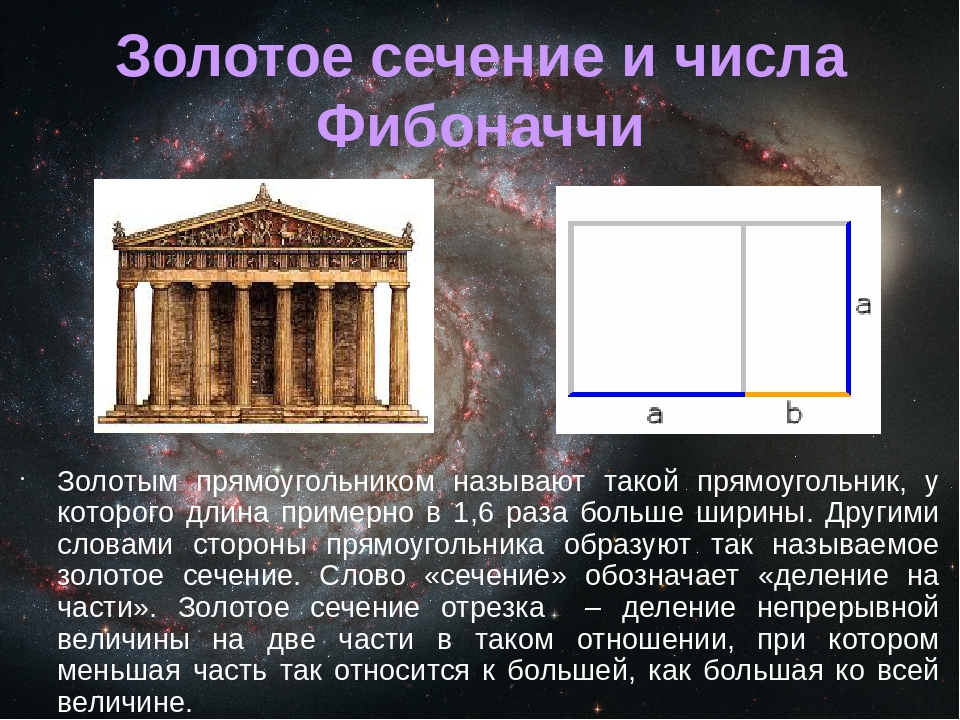 fibonacci and the golden ratio mathematics essay Mathematician: the 'golden ratio' formula for beauty is bulls—t' zeising's claim was that the proportions of the human body are based on the golden ratio — also referred to as the fibonacci sequence — which zeising says appears the most scientifically pleasing.