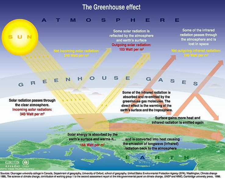 the chain effect of the greenhouse effect and global warming Anthropogenic global warming (agw) is a theory that suggests that human activity is causing the earth to warm the theory posits that greenhouse gases, including carbon dioxide, methane, nitrous oxide, and water vapor, trap solar warmth on the planet.