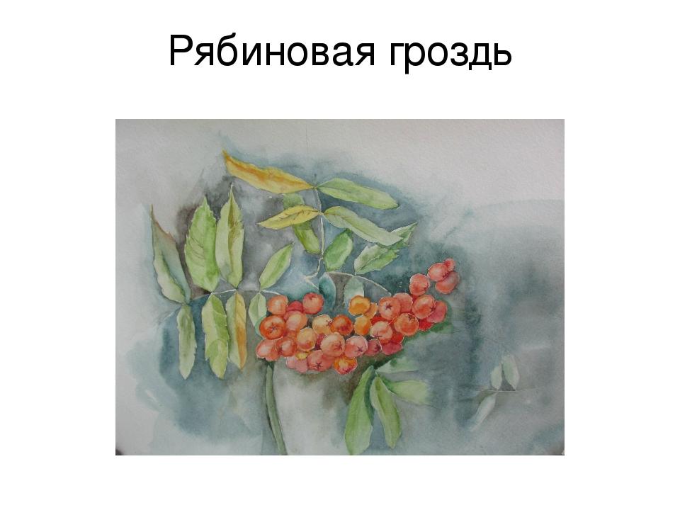 Рябиновая гроздь
