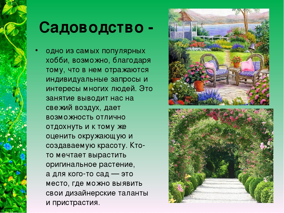 Садоводство - одно из самых популярных хобби, возможно, благодаря тому, что...
