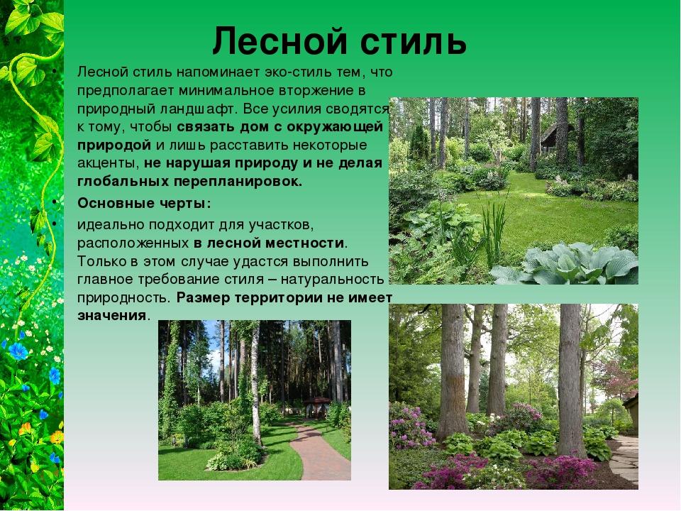 Лесной стиль Лесной стиль напоминает эко-стиль тем, что предполагает минималь...