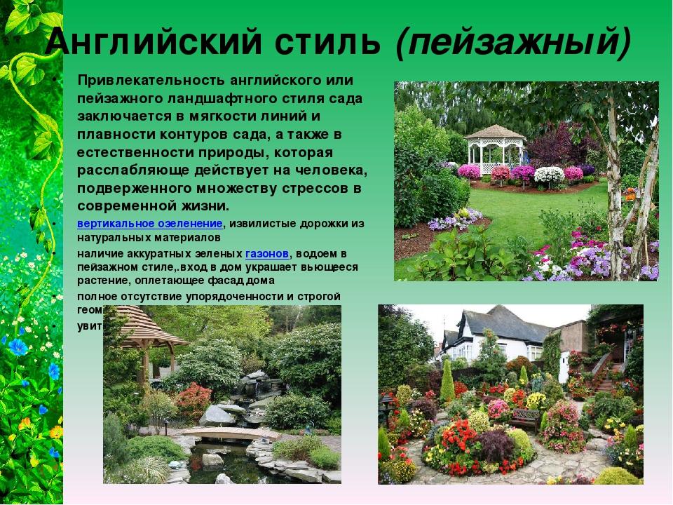 Английский стиль (пейзажный) Привлекательность английского или пейзажного лан...