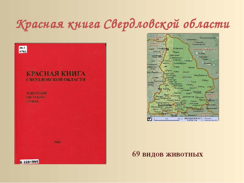 Красная книга Свердловской области 69 видов животных