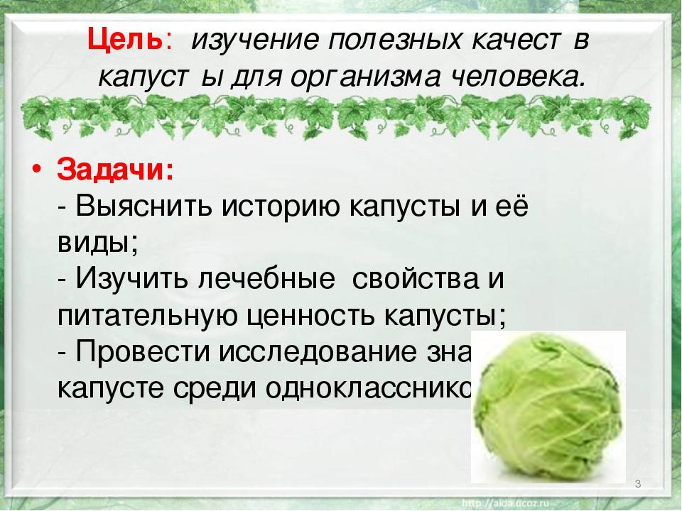 капуста белокочанная польза и вред лечебные свойства