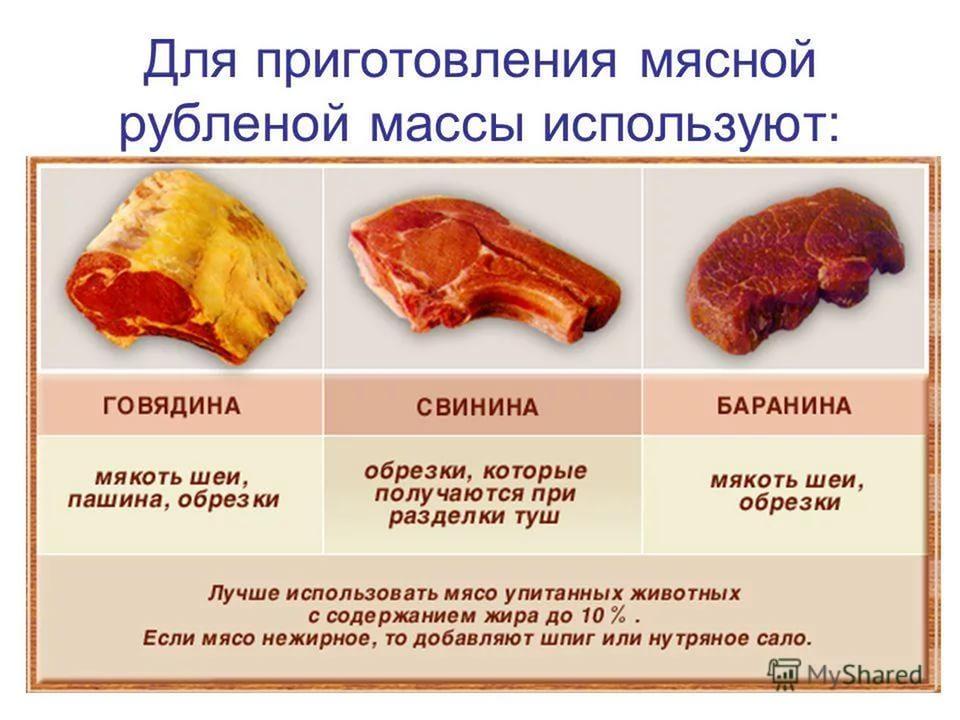 Реферат на тему приготовление блюд из мяса 8308