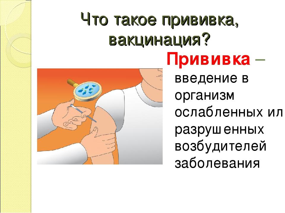 Что такое прививка, вакцинация? Прививка –введение в организм ослабленных или...