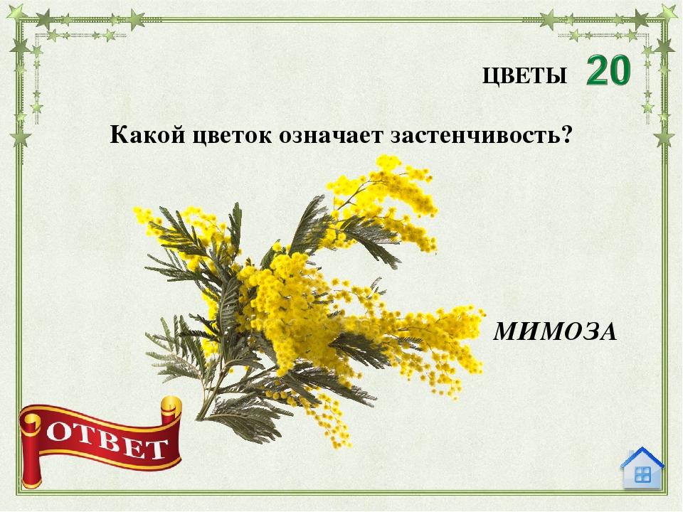 Российская река с женским именем ЛЕНА ИМЯ