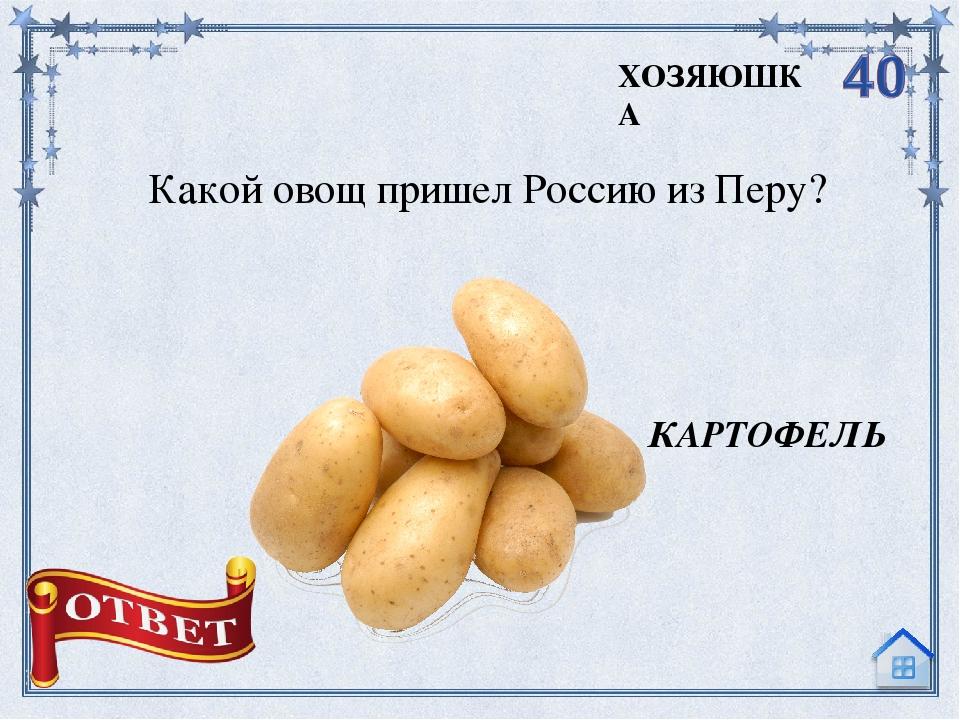 Кого любил Пьеро из сказки А. Толстого «Золотой ключик»? МАЛЬВИНУ ЛЮБОВЬ