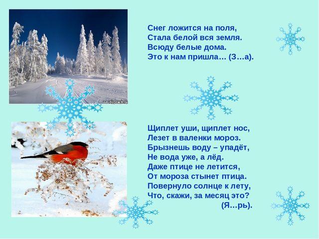 Снег ложится на поля, Стала белой вся земля. Всюду белые дома. Это к нам при...