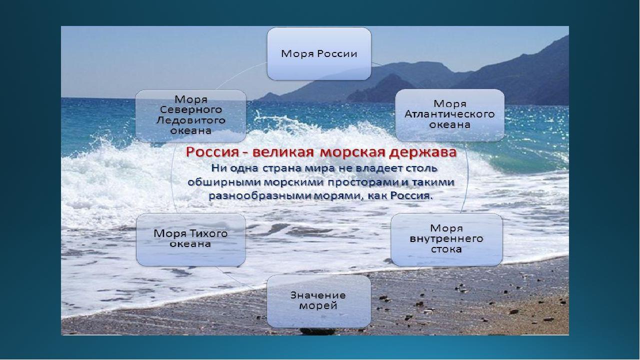 Какие картинки по проекту океан