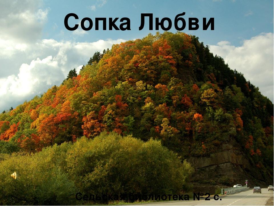 Сопка Любви Сельская библиотека №2 с. Огоньки