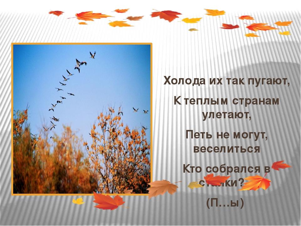 Холода их так пугают, К теплым странам улетают, Петь не могут, веселиться Кт...