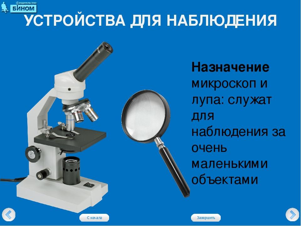 УСТРОЙСТВА ДЛЯ НАБЛЮДЕНИЯ Назначение микроскоп и лупа: служат для наблюдения...