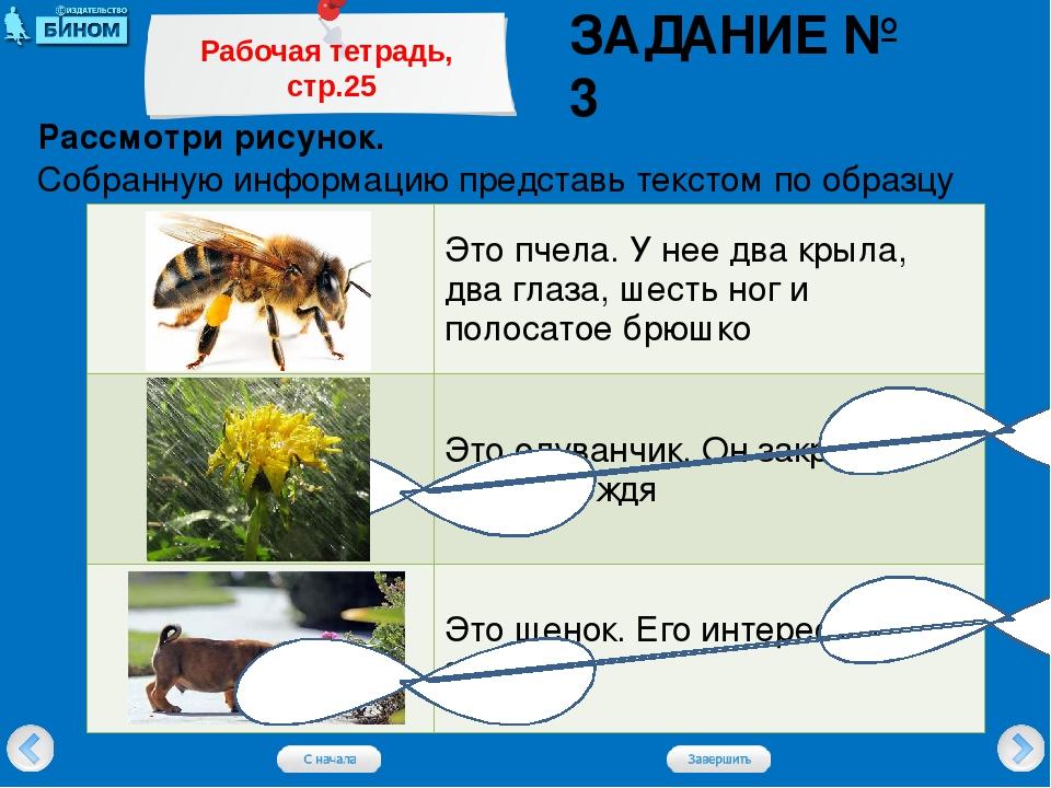 Рассмотри рисунок. Собранную информацию представь текстом по образцу ЗАДАНИЕ...
