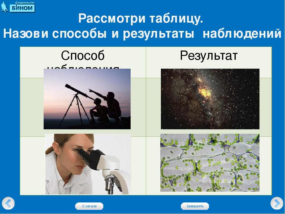 Рассмотри таблицу. Назови способы и результаты наблюдений Способ наблюдения Р...