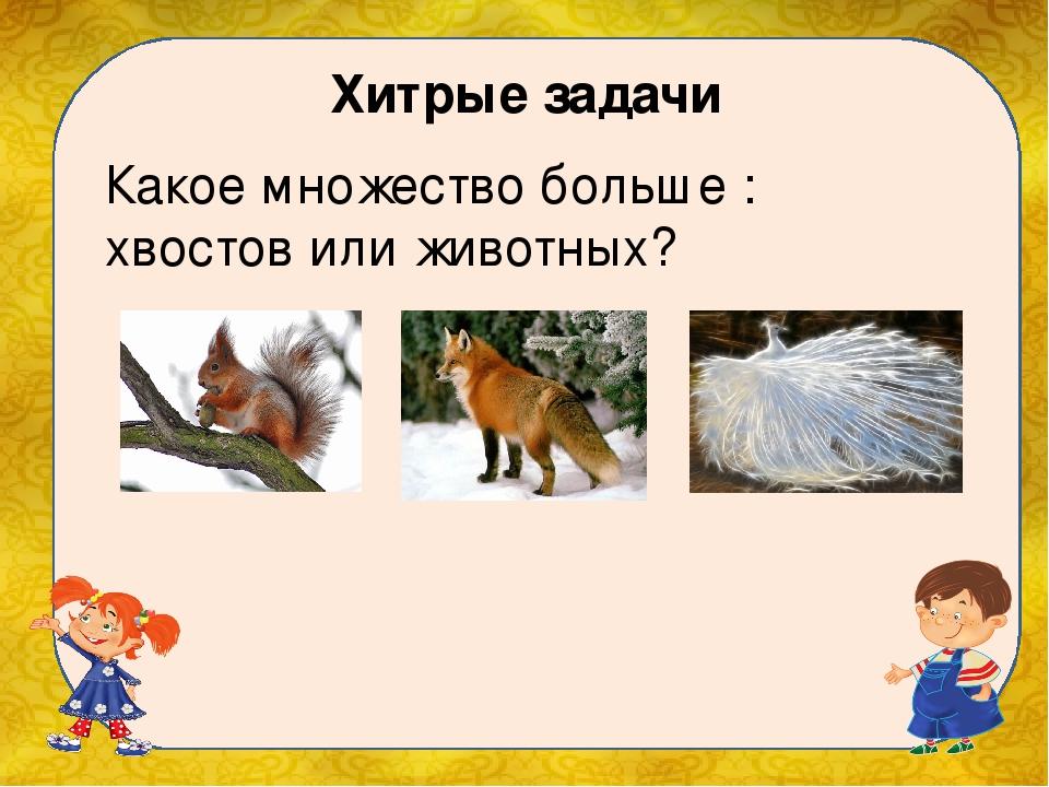 Хитрые задачи Какое множество больше : хвостов или животных?