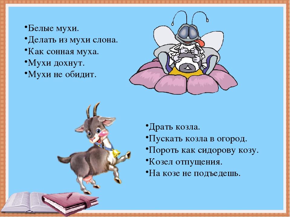 Белые мухи. Делать из мухи слона. Как сонная муха. Мухи дохнут. Мухи не обиди...