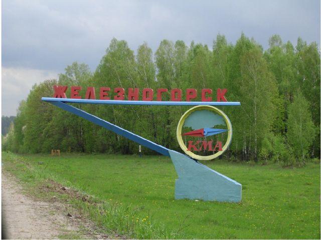 Активисты ОНФ приедут в Железногорск с инспекцией