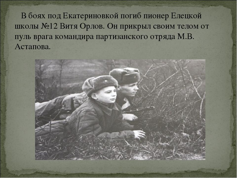 В боях под Екатериновкой погиб пионер Елецкой школы №12 Витя Орлов. Он прикр...