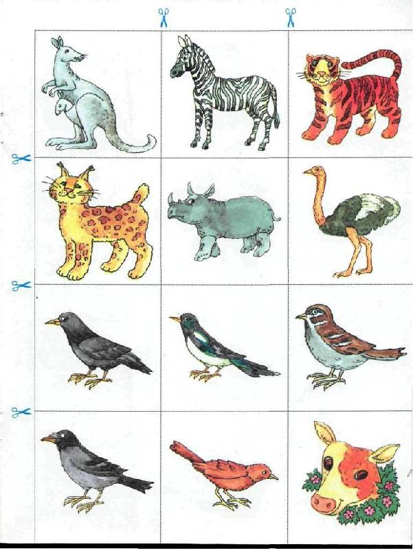 чувствуете, что картинки животных со звуками что люди