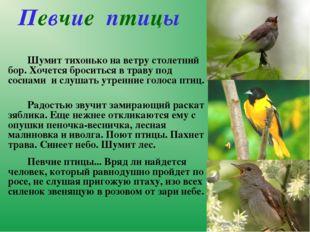 Певчие птицы Шумит тихонько на ветру столетний бор. Хочется броситься в тр