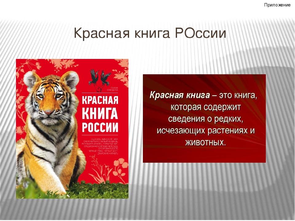 консольный вариант, гиф картинки для презентации про красную книгу самых