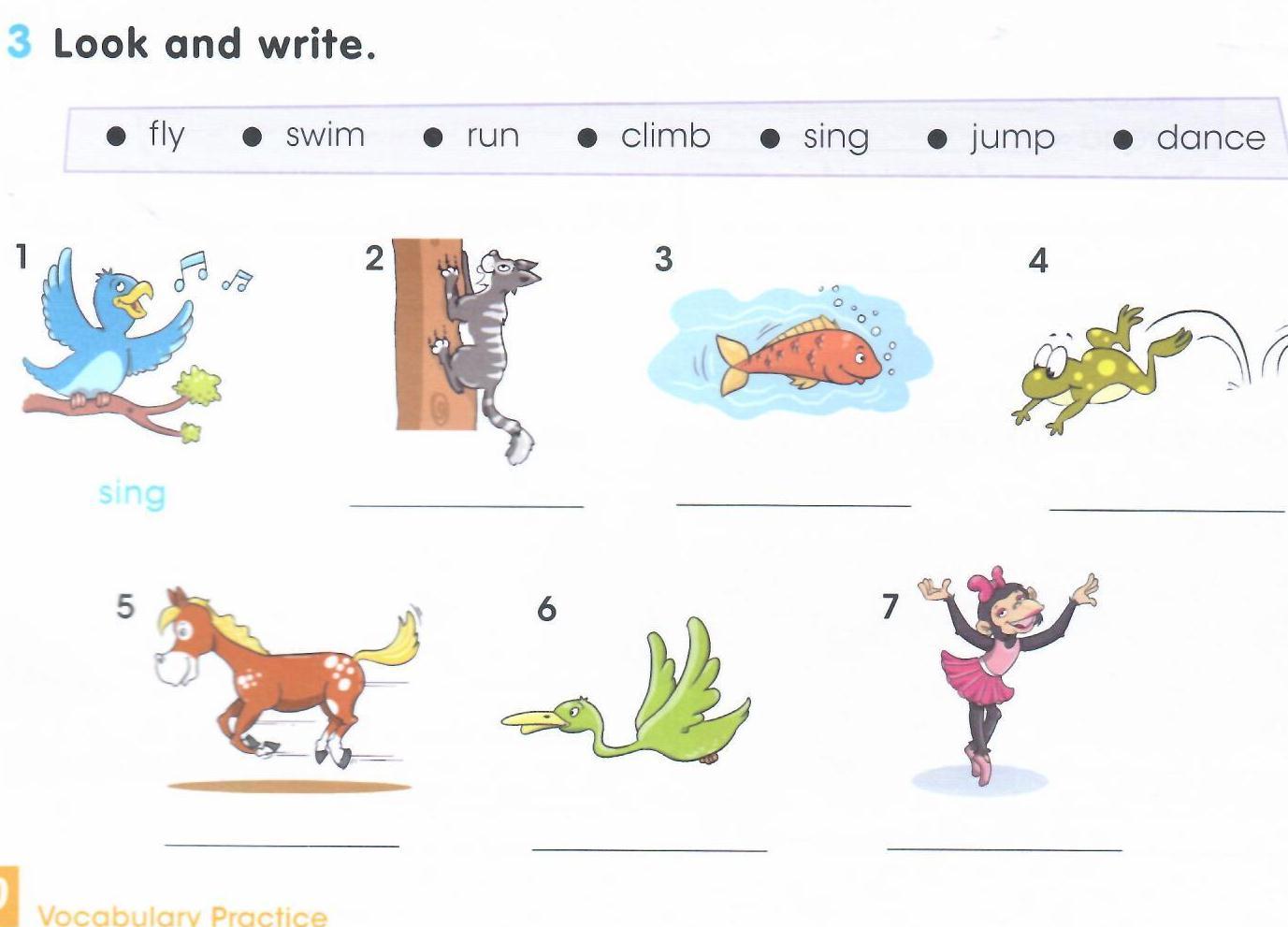 "Открытый урок на тему ""What can animals do?"""