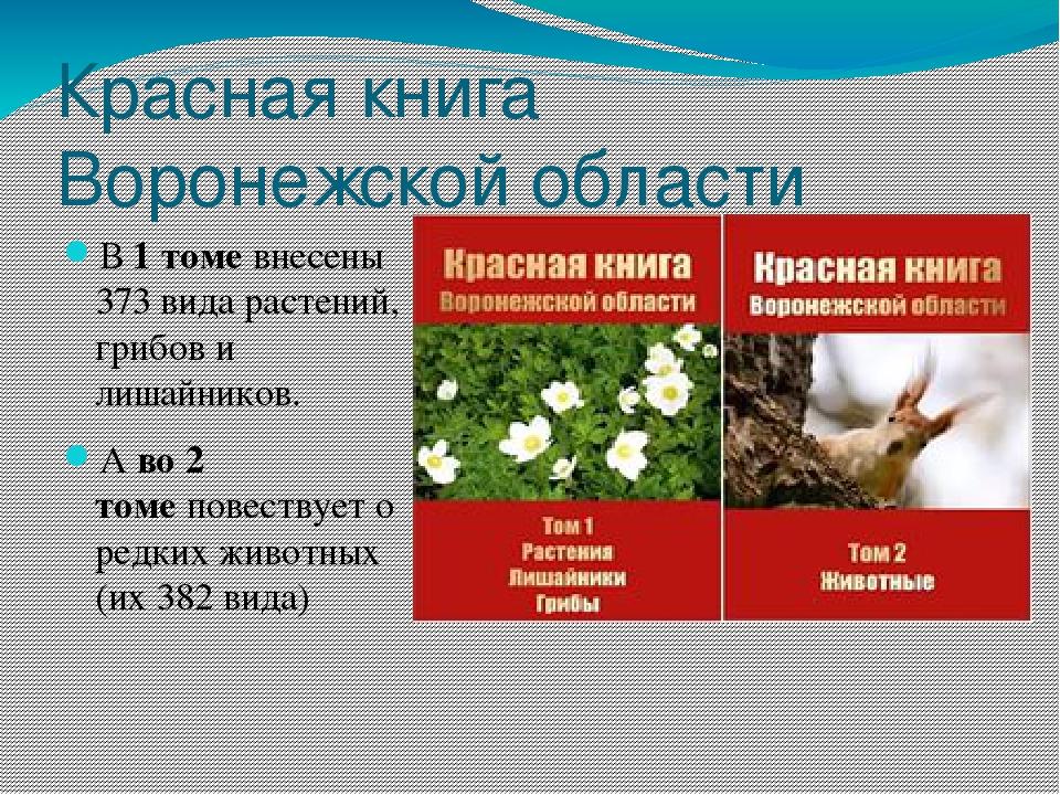 Красная книга фото обложки растения