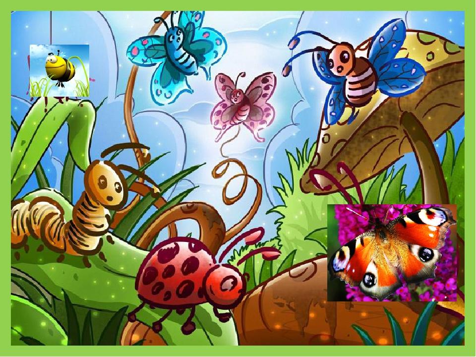 картинка сада с насекомыми эти колонки автора