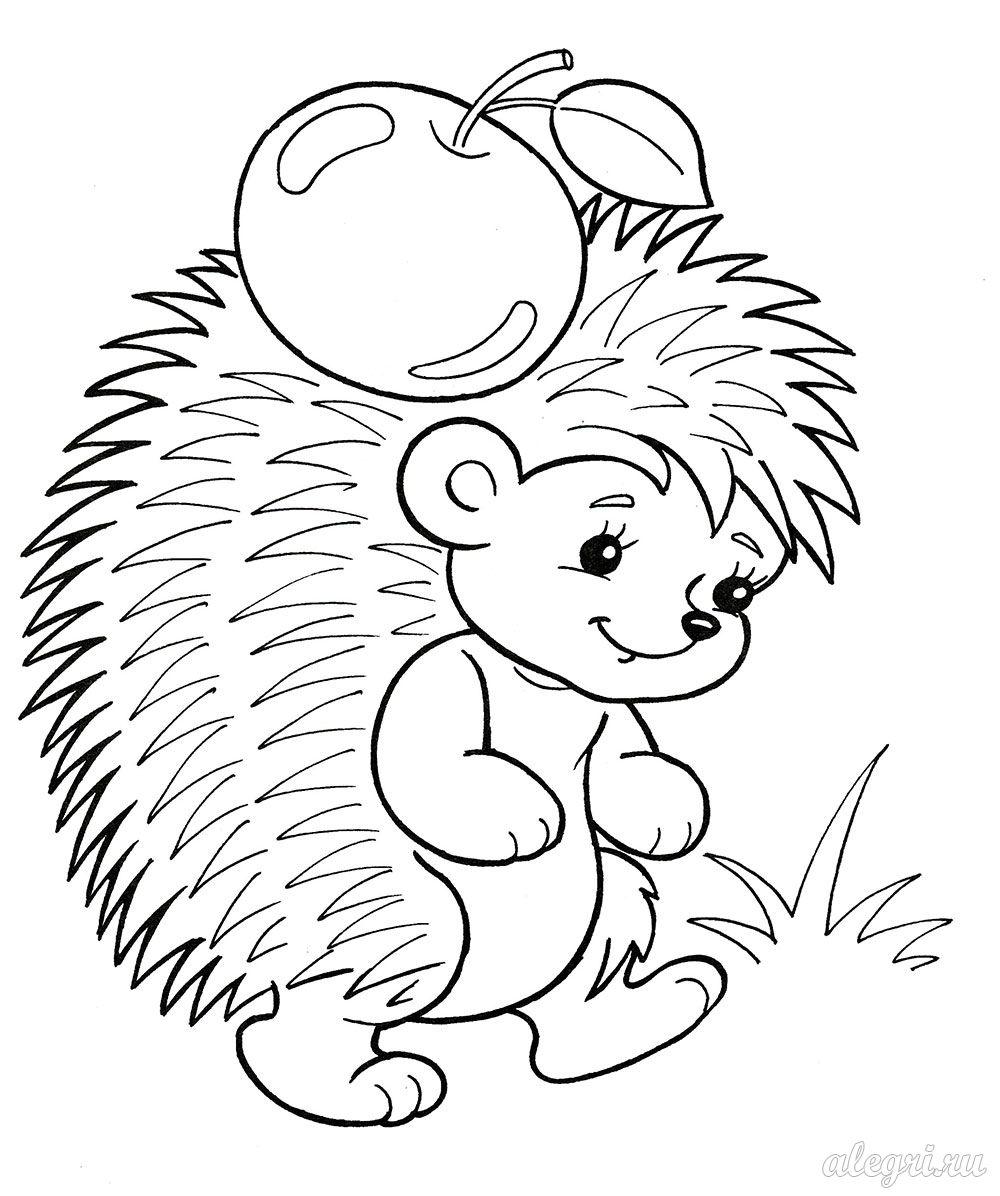 Анимированная сорбонка викторины Ежик раскраска для малышей