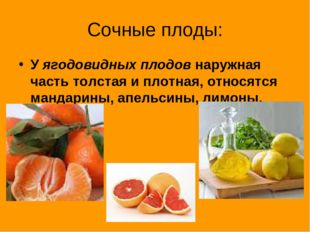 Сочные плоды: У ягодовидных плодов наружная часть толстая и плотная, относятс