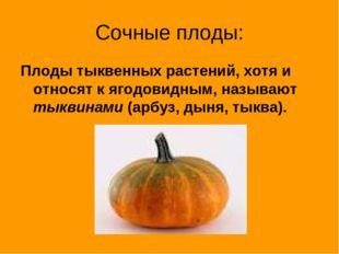 Сочные плоды: Плоды тыквенных растений, хотя и относят к ягодовидным, называю