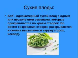 Сухие плоды: Боб - однокамерный сухой плод с одним или несколькими семенами,